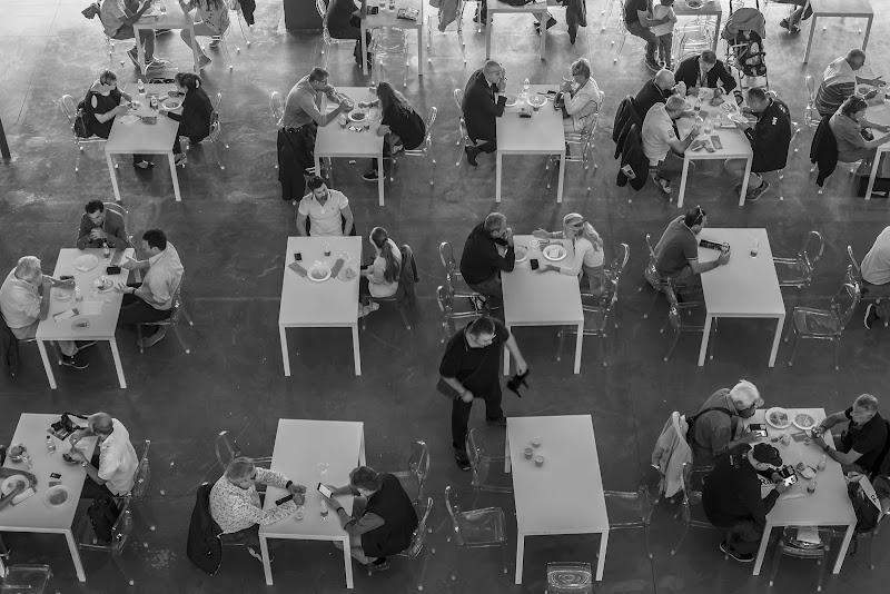 Chi non mangia in compagnia........ di stefanogaleotti