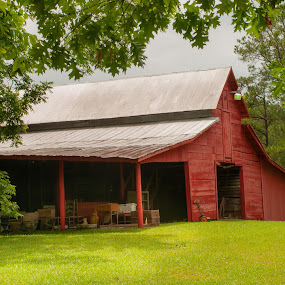 On the Farm 3 by Kevin Beasley - Buildings & Architecture Decaying & Abandoned ( red, sky, laffayette, barn, alabama, grass, farm,  )