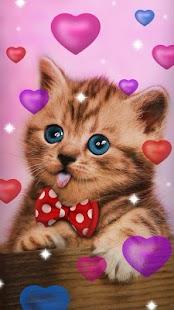 Sladké kočky, živé tapety - náhled