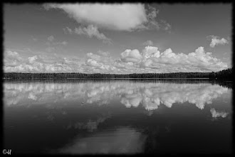 Photo: The Lake  #MonochromeMonday