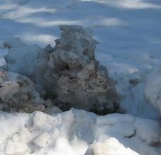 Photo: ムーミン ICUの芝生の上の雪