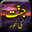 Jannat Ka Haseen Manazir - Urdu Book Offline icon