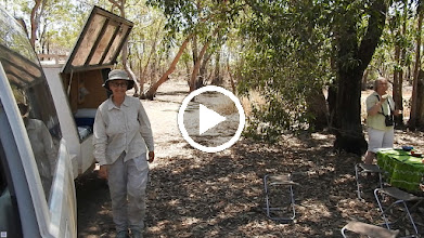 Video: Picnic lunch at Leaning Tree Lagoon