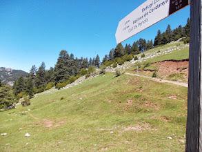 Photo: la Piste conduit à Bellver de Cerdanya , mais nous irons chercher la crête vers les Penyes Altes