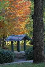 Photo: Elms Wishing Well Excelsior Springs, Mo.