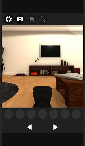 Escape game Cat's Detective 2