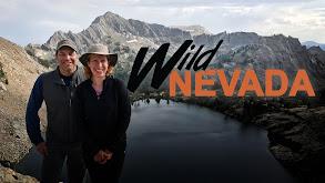 Wild Nevada thumbnail