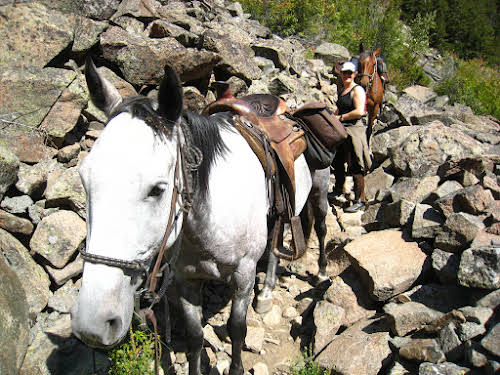 A Week as a Cowgirl Horseback Riding in Montana Ranch // Walking by the horse through the rock field