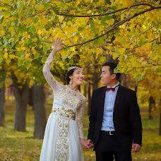 Wedding photographer Vladimir Akulenko (Akulenko). Photo of 21.11.2016