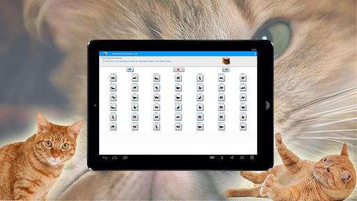 Human To Cat Translator Website