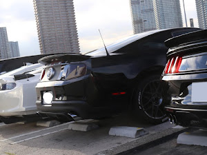 シェルビー GT350 のカスタム事例画像 Black Cobraさんの2019年10月04日23:07の投稿