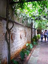 Photo: Do outro lado da parede.  http://celiamartins.blogspot.com/
