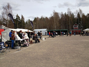 Photo: Dog show