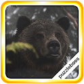 Jigsaw Puzzles: Grizzly Bears icon