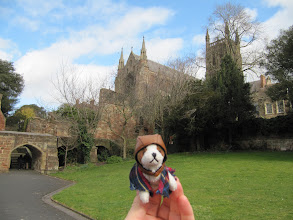 Photo: Doggie visits Worcester Cathedral