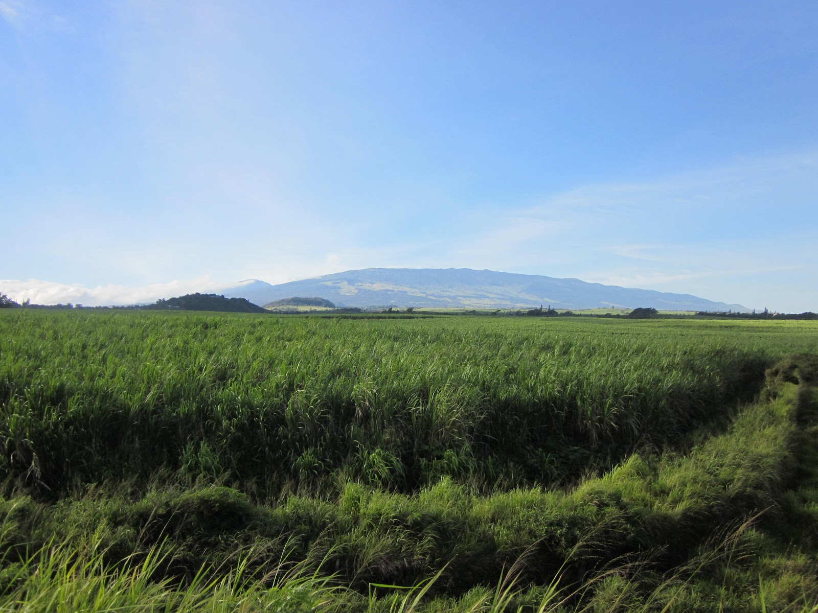 Cycling Haleakala Volcano - as seen from Hana Highway