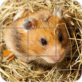 Animals Puzzle: Hamsters