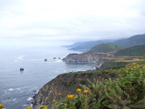 Photo: Flowers and curves Big Sur Coastline along Highway One