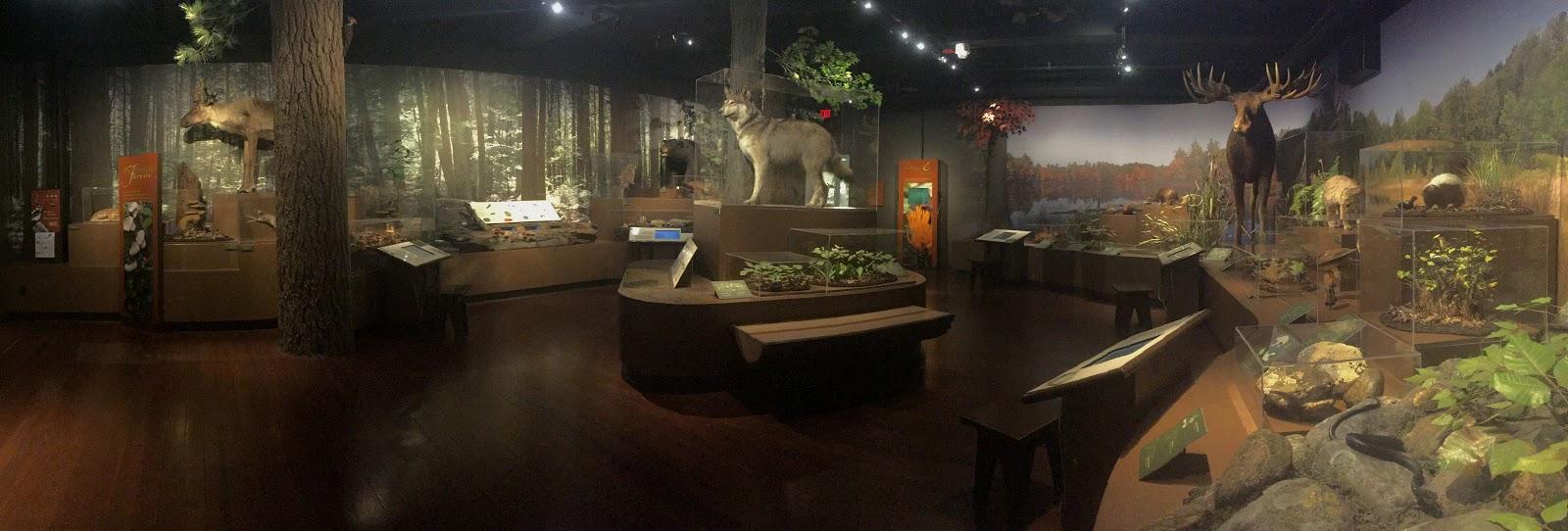 museum room.JPG