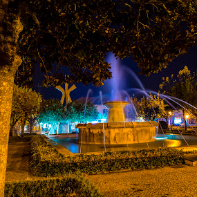 Fountain by Edu Marques - Buildings & Architecture Statues & Monuments ( park, night photography, fountains, fountain, gardens, night, garden, night shot, nightscapes, nightscape )