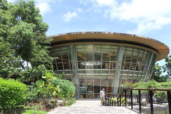 台東旅遊-台東原生應用植物園 親子牧場丨神農百草 大自然知識寶庫的藏經閣