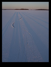 Photo: 009 Schaduwen en sporen op Färnebofjärden