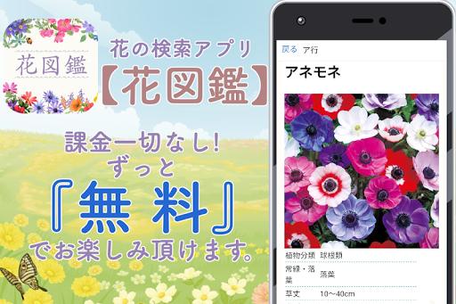 花の名前 写真 調べる無料 花図鑑~植物図鑑 アプリ ガーデニング インテリア部屋作り  screenshots 1