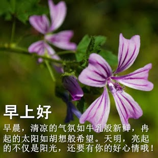 Good Morning in Chinese - náhled