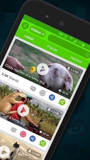 What's Video for WhatsApp 1.6 screenshots 2