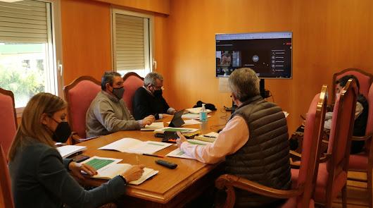 La reunión con los alcaldes ha sido por videoconferencia.