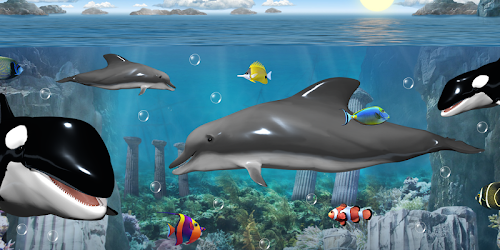 Dolphins and orcas wallpaper 11433 seedroid dolphins and orcas is a cool altavistaventures Gallery