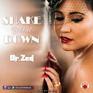 Dr. Zed_-_Shake you Down Upload Your Music Free