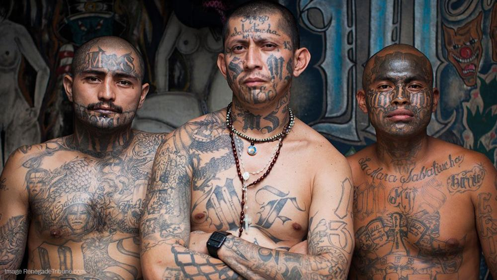 Obama's DACA program tied to growth of deadly MS-13 gang ...