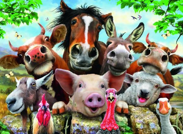 Selfies animales granja ( Ref:  0000013207 )