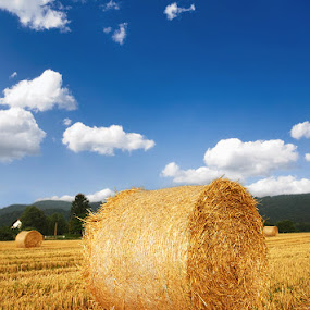 Bales on field. by Denis Klicic - Landscapes Prairies, Meadows & Fields ( clouds, field, sky, blue, hay bales, bales, gold )