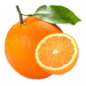 Pests and Diseases of Citrus icon