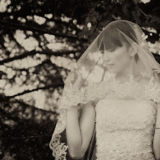 Wedding photographer Viktoriya Belikova (VitaBelya). Photo of 24.06.2013