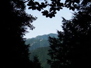 山頂は一部の切り開きのみ