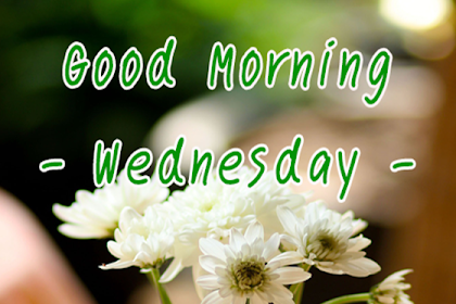 Bests Greetings Under Good Morning Wednesday Morning Images Catetory