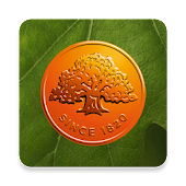 Swedbank privat icon