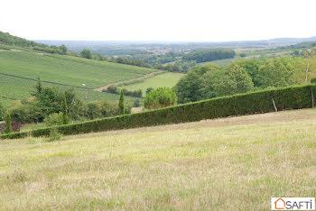 terrain à Chardonnay (71)