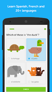Duolingo: Learn Languages Free v3.106.3 [Mod] APK 1
