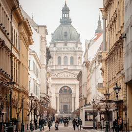 St Stephen's Basilica by . Reedd2 - Buildings & Architecture Places of Worship ( hungary, budapest, church, avenue, dome, st. stephen's basilica,  )