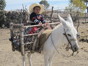 Photo: Dylan, age 3, our youngest student enjoys a burro ride Feb. 2103