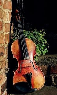 Violin Wallpaper - náhled