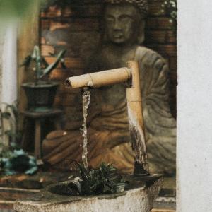 La fontaine Bouddha