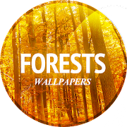 Free Wallpaper with forest APK for Windows 8
