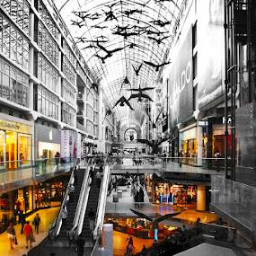 The Eaton Centre by J Delos Santos - Buildings & Architecture Public & Historical ( pwcbuilding-dq )