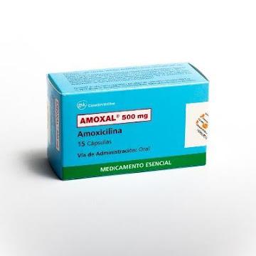 Amoxal 500Mg Cápsulas   Caja x15Cap GSK Amoxicilina