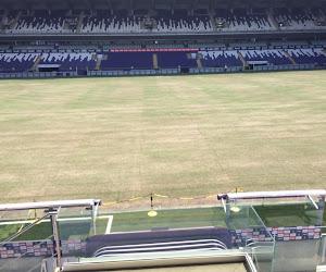 """Un nouveau terrain inspiré de celui de City pour Anderlecht: """"C'était le principal souhait de Vincent Kompany"""""""
